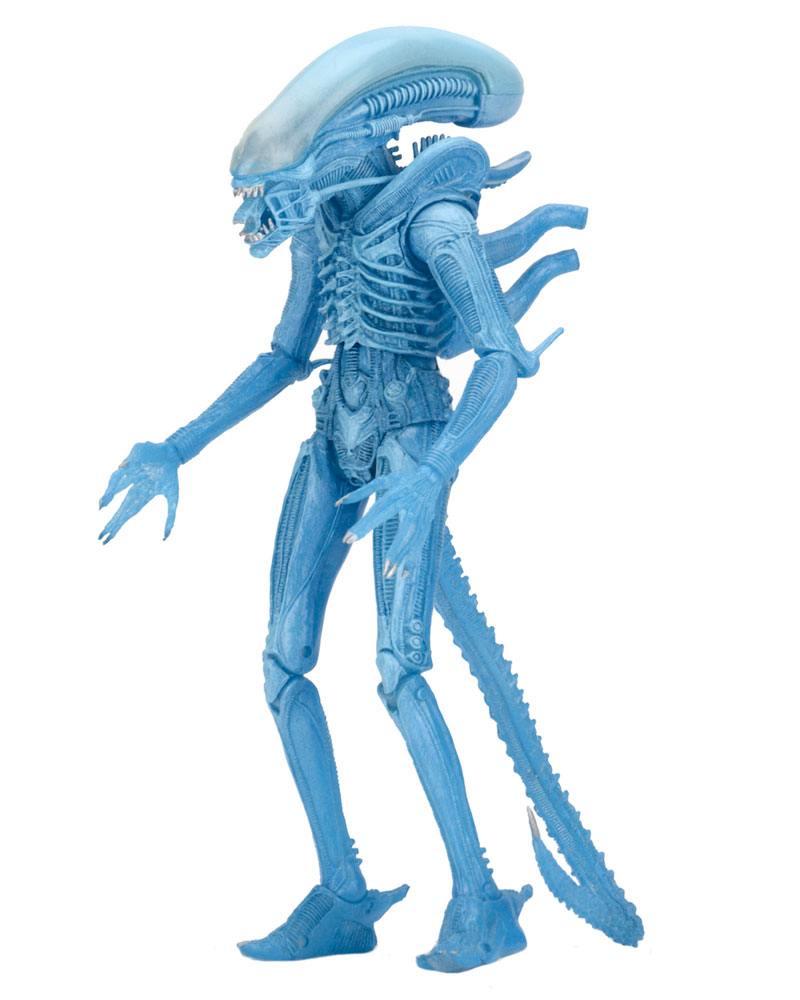 Aliens Series 11 Action Figures  Warrior Alien (Kenner) 23 cm