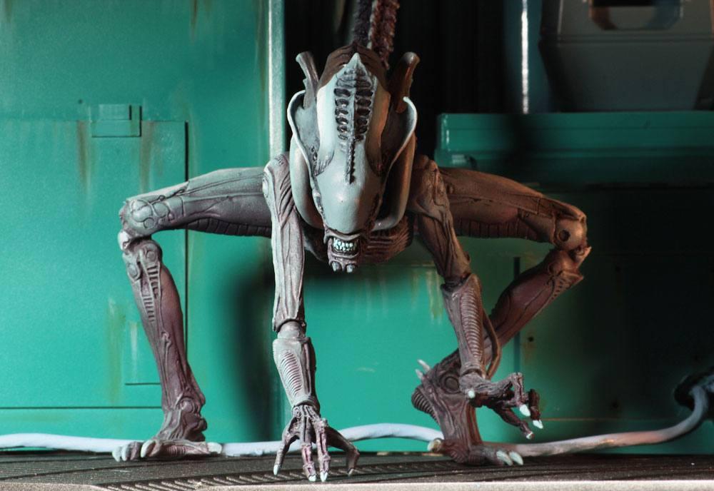 Alien vs Predator Action Figure Alien Arcade Arachnoid Alien 22 cm