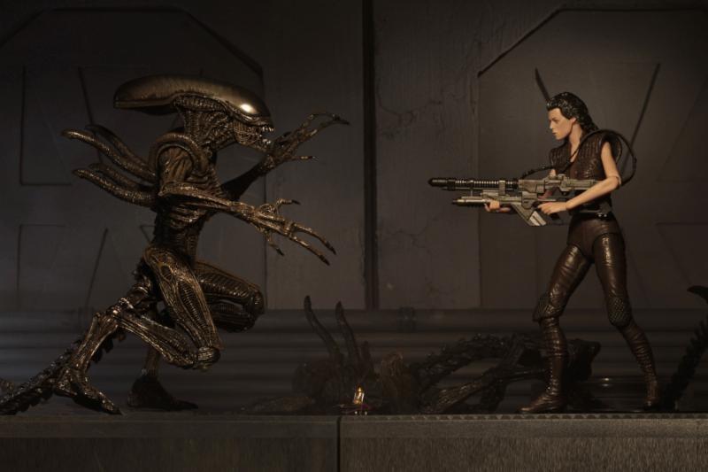 Action Figure Aliens Series 14 Xenomorph Warrior 18 cm