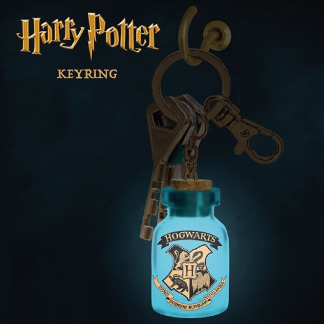 Porta-Chaves com luz Harry Potter: Light Up Keyring